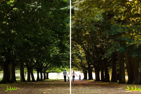 color-adjusting-photoshop-03-lenzak